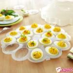 platou-pentru-oua-cu-capac-2224